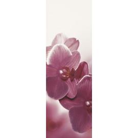 Wandtegels 20x60 cm Abrila Bloemen B decortegels