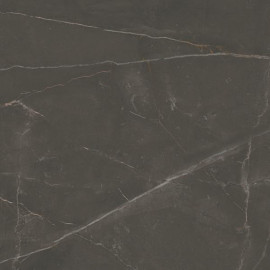 Vloertegels Linearstone Brown mat 60x60 cm